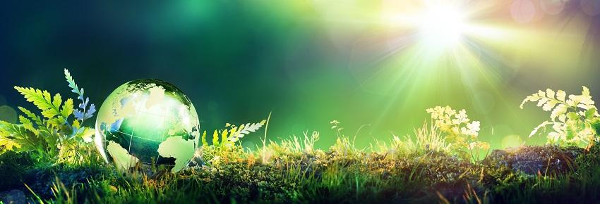 Eine grüne Welt